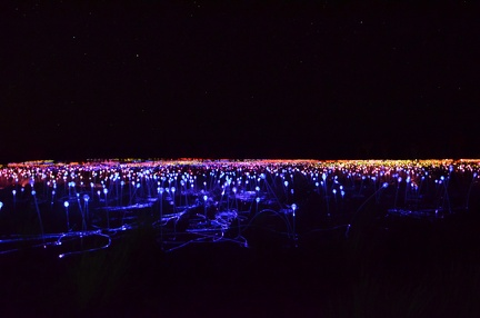 Field of Lights