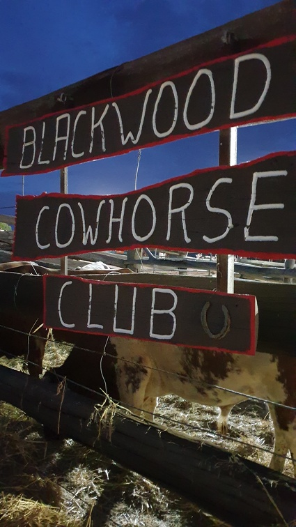 Blackwood Cowhorse Club...